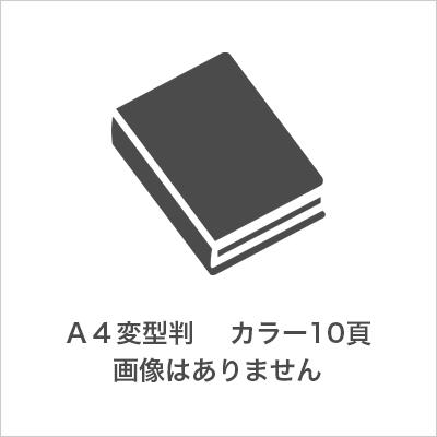 A4変型判  カラー10頁